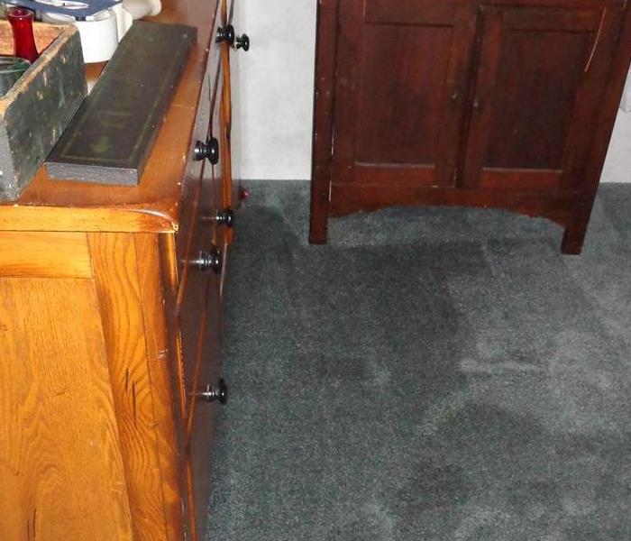Carpet Removal After Water Damage Before