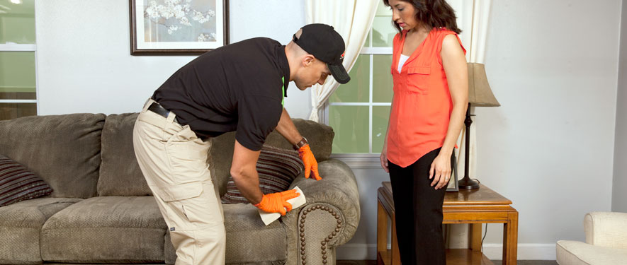 Brunswick, ME carpet upholstery cleaning